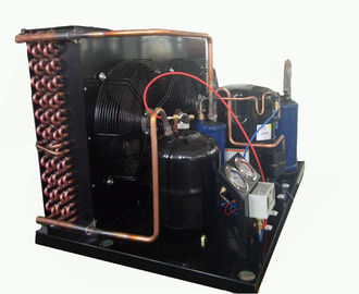 TAG2522Z 6HP R404a Low Temperature Condensing Unit 3.75KW Cooling Capacity